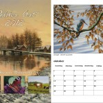 Polderart Kalender 2012